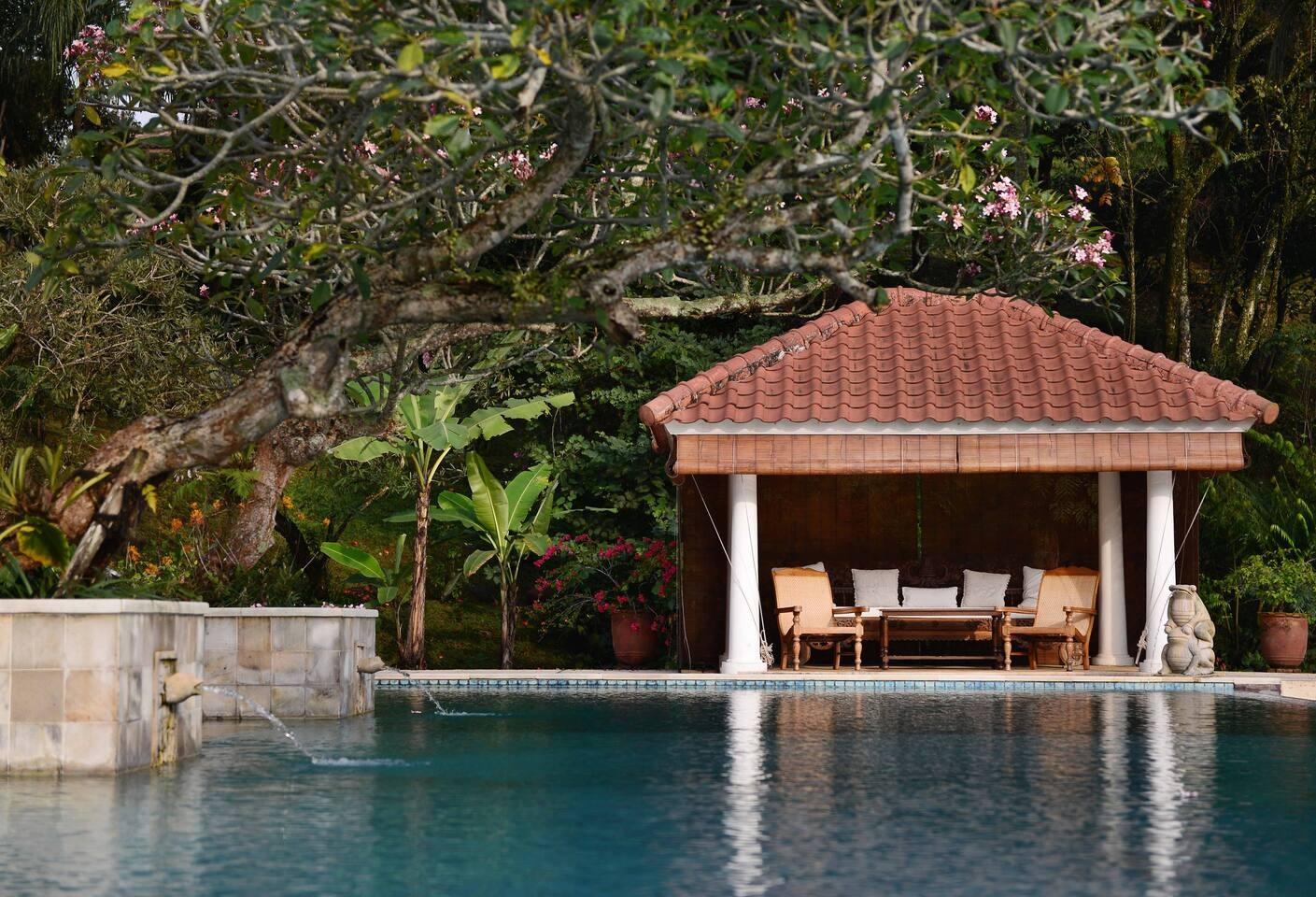 sewa villa di bogor ada kolam renang