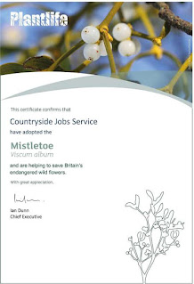 image of certificate confirming CJS is sponsoring mistletoe with Plantlife