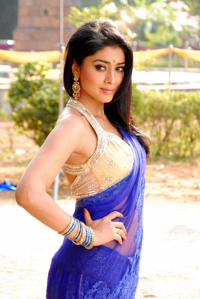 Splendid Shriya saran sexy in blue saree