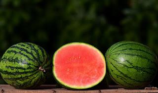 1200 से अधिक प्रकार के तरबूच।  type of Watermelon.