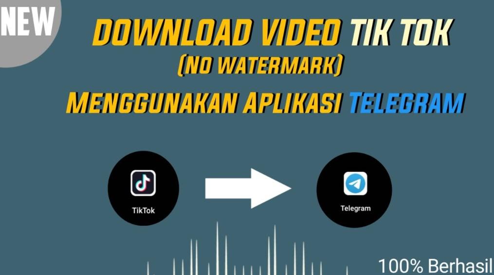 Cara Download Video TikTok di Telegram