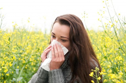 All You Need to Know About the Symptoms of Nasal Allergies