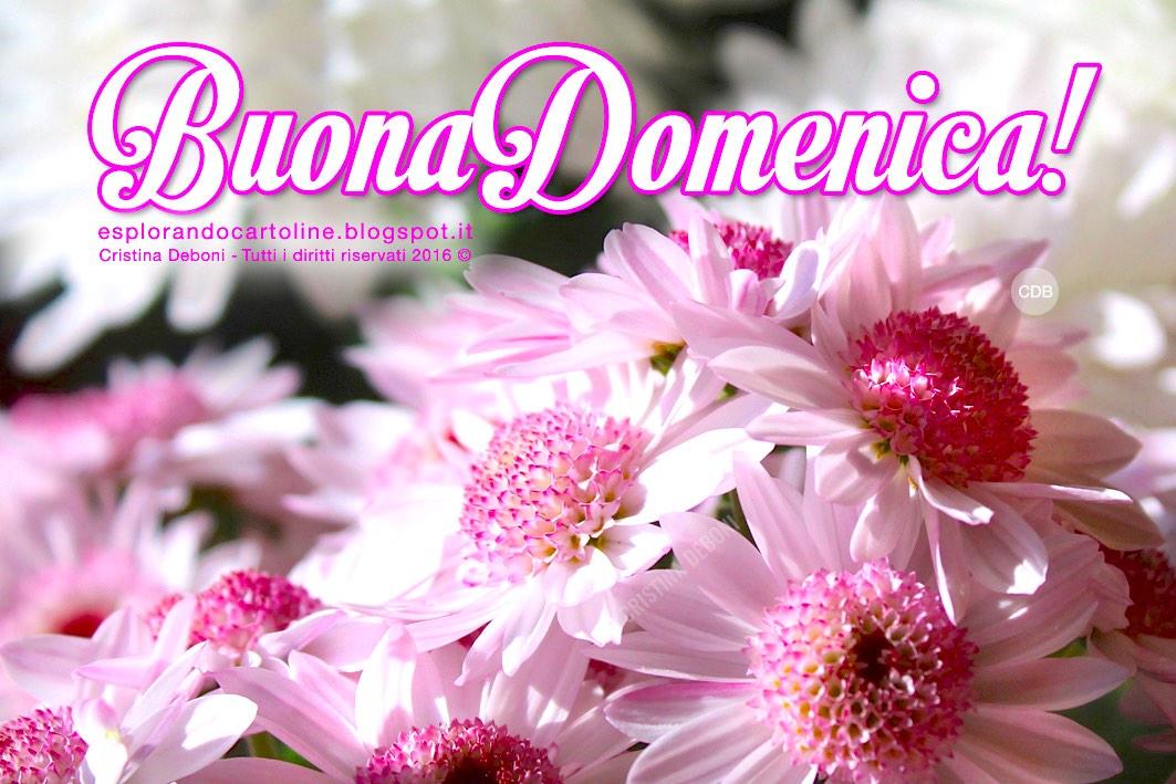 Cdb Cartoline Per Tutti I Gusti Romantica Cartolina