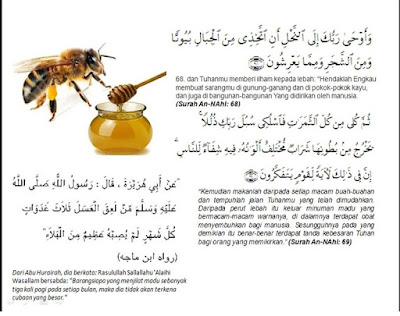 Madu dalam Quran dan Hadits, credit by Ahlinya Lambung