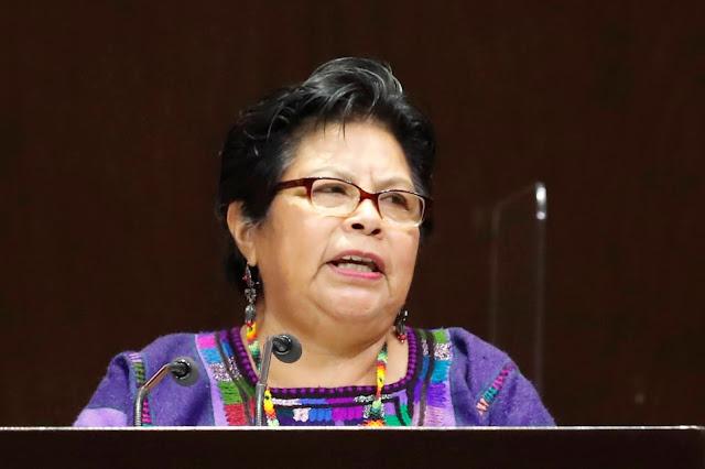 Necesario, garantizar representación política de pueblos indígenas en el Congreso de la Unión: María Roselia Jiménez