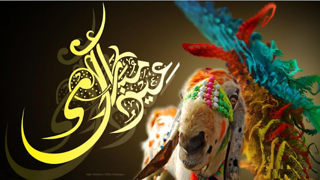 Bakra Eid Mubarak Images Pictures Photos Wallpapers 2016