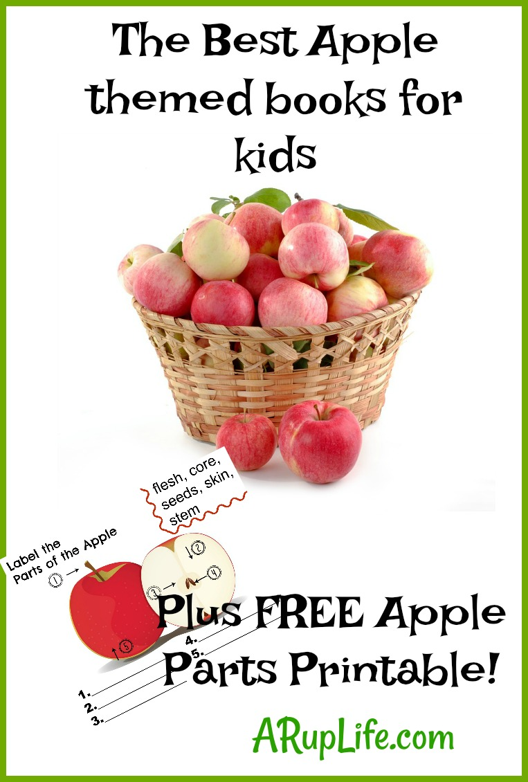 photograph about Parts of an Apple Printable identified as A RUP Existence: Our Preferred Apple Examine Alouds Free of charge Apple