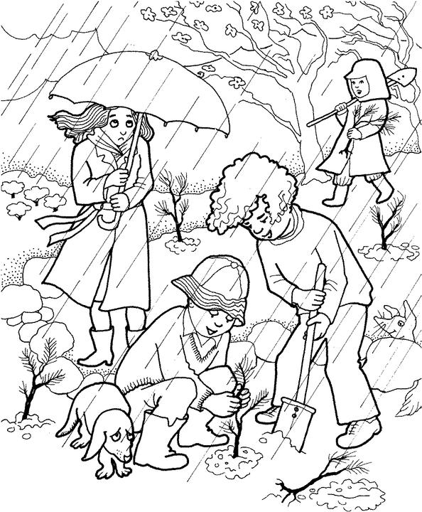 7 fruits for tu bshvat coloring pages | Morah Betsy: February 2012
