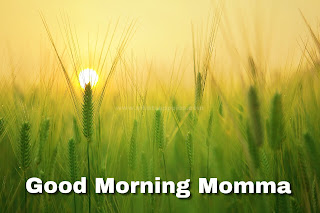 Good Morning Images for Mom