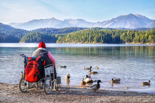 cadeirante dando comida aos patos em frente a um lago