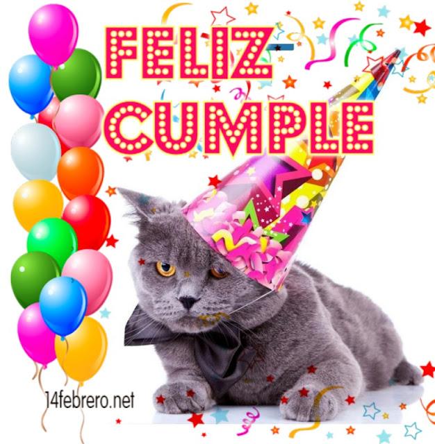 Gato feliz cumpleaños
