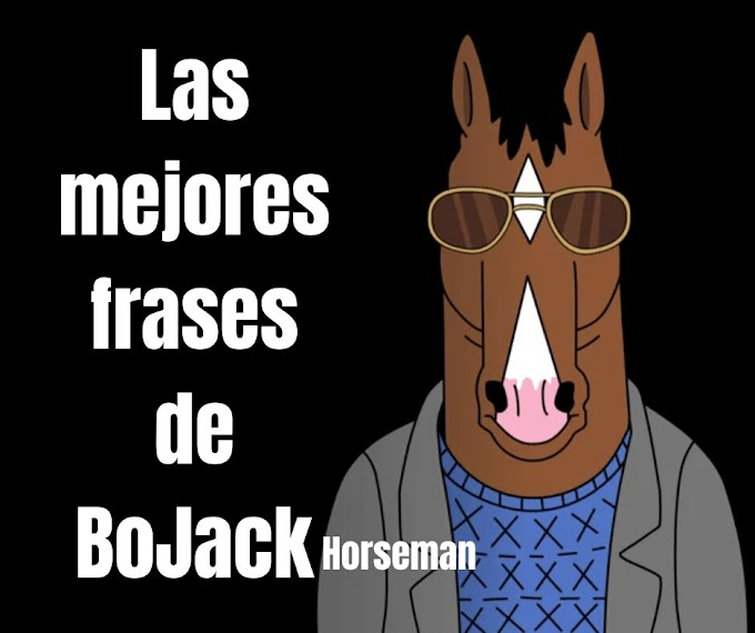 Las mejores Frases De Bojack Horseman