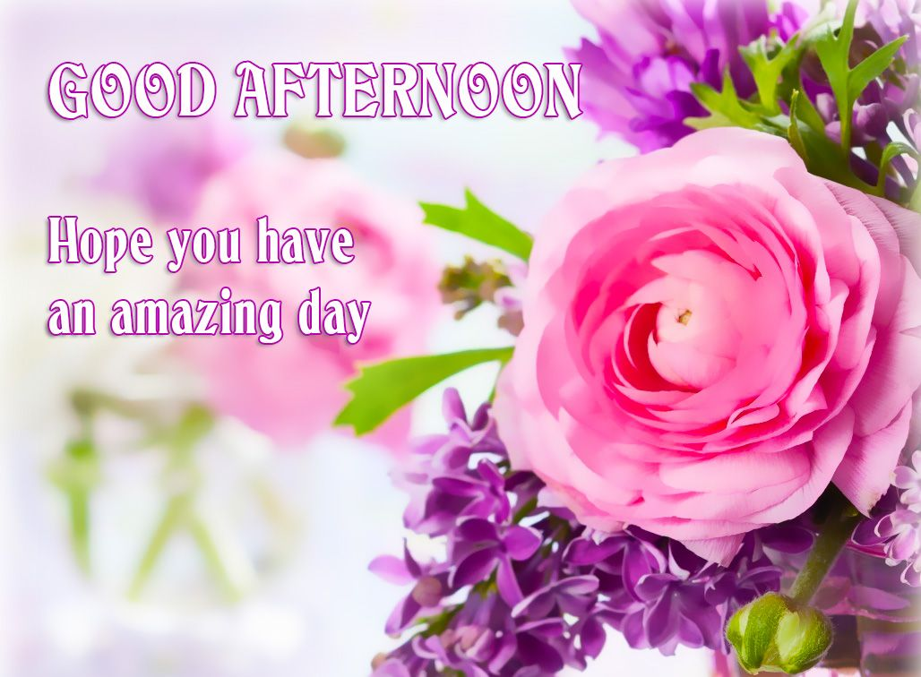 ImagesList.com: Good Afternoon 2