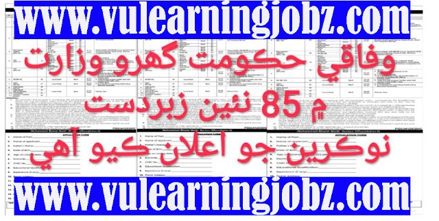 Latest 85 Job Posts ! Ministry Of Interior Government Of Pakistan Jobs 2021 For Assistant ,Steno-Typist , UDC & MORE