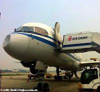Bird Stirke Air China 6-9-13