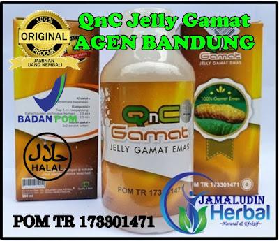 http://tilupuluhherbal.blogspot.com/p/qnc-jelly-gamat-agen-bandung.html