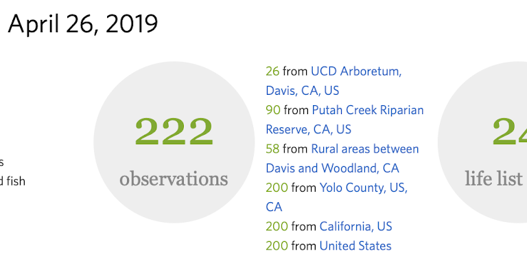 My observations for the City Nature Challenge 2019 - Sacramento #iNaturalist