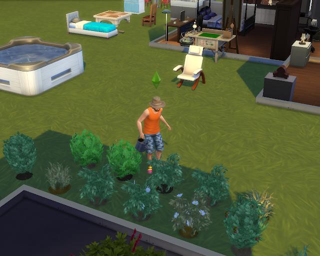 The sims 4 | First Garden