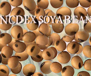 NCDEX soyabean, SoyaBean  Tips,