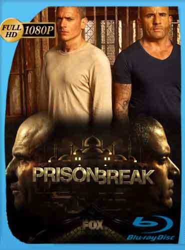 Prison Break Temporada 5 HD [1080p] Latino [GDrive] SilvestreHD