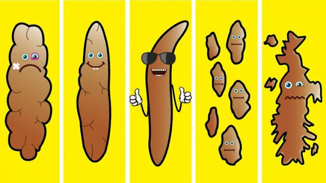 What This Poop Chart Says About Your Health