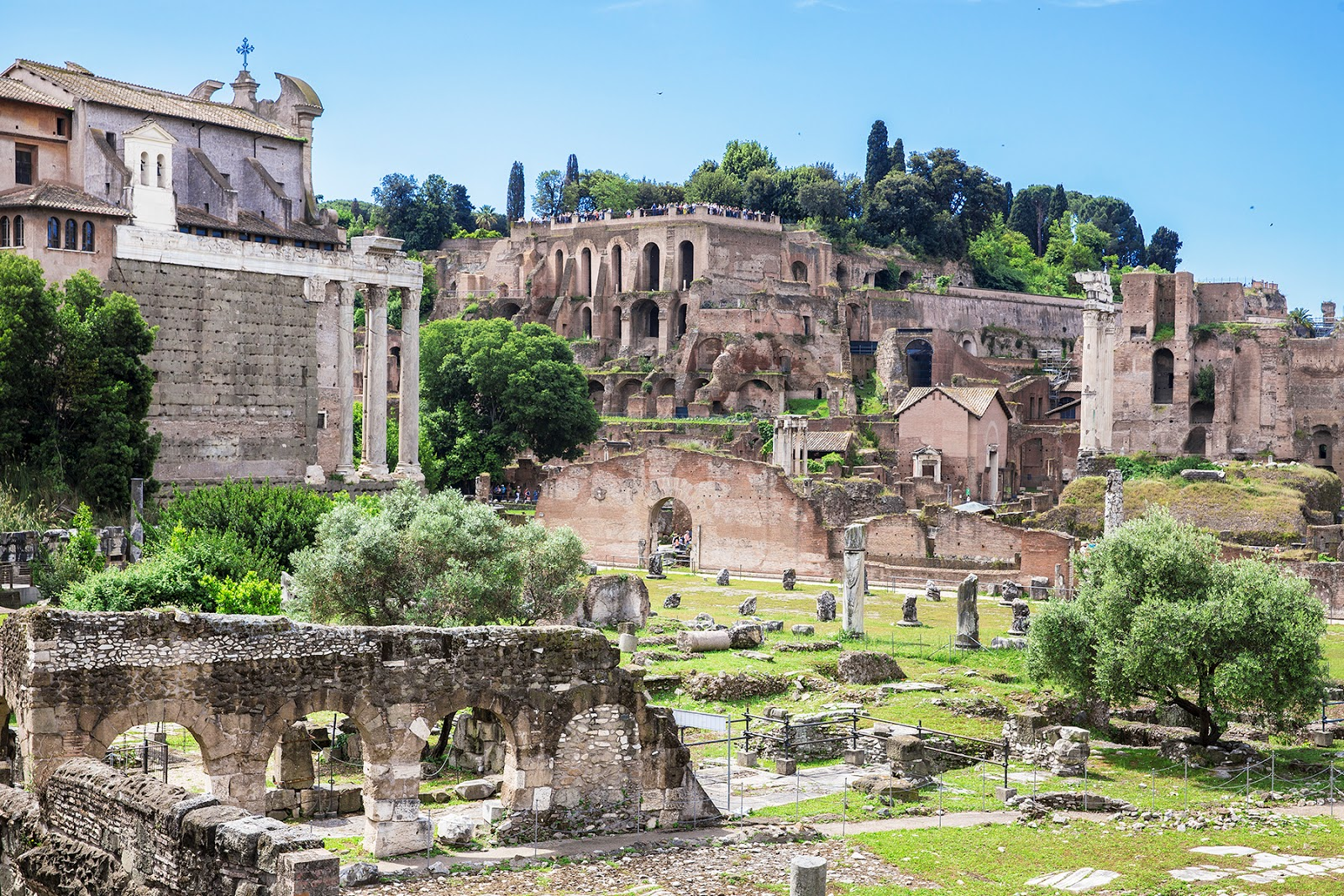 Rome, Italy by Posh, Broke, & Bored - Palatine Hill