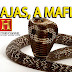 A Máfia das Cobras - Documentario National Geographic Dublado HD