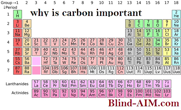 why-is-carbon-important