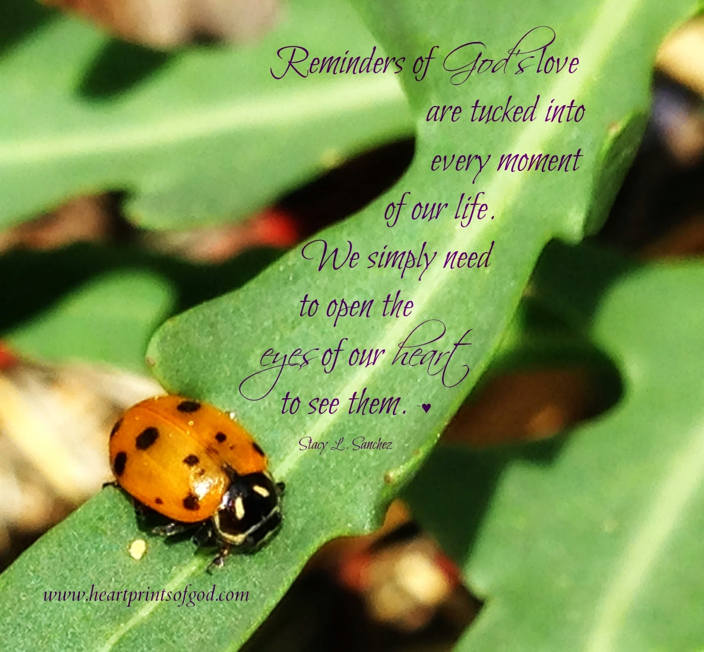 Heartprints Of God: Reminders Of His Love~