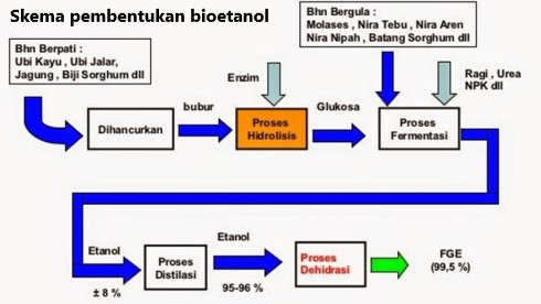 Skema pembentukan bioetanol