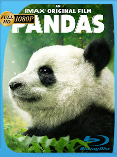 Pandas (2018) Documental HD [1080p] Latino  [Google Drive] Panchirulo