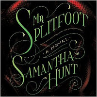 Cover of Mr. Splitfot by Samantha Hunt