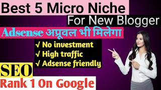 5 Best Micro Niche blog ideas 2020 in hindi.