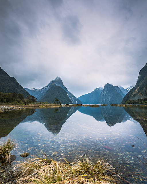 milford sound reflections