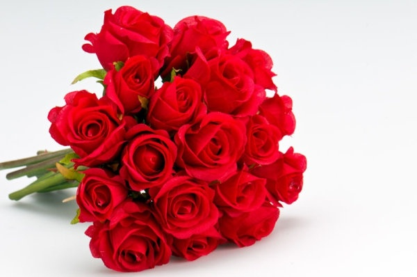 Gambar Flowers Hd Qygjxz Gambar Bunga Ros di