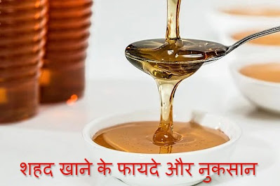 शहद (Honey) खाने के फायदे | Benefits of honey in hindi