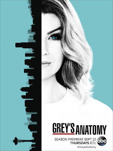 Grey's Anatomy Temporada 13 (HDTV 720p Ingles Subtitulada)