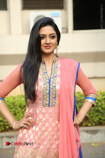 Actress Vimala Raman Stills in Beautiful Pink Salwar Kameez at (ONV) Om Namo Venkatesaya Press Meet  0085.JPG