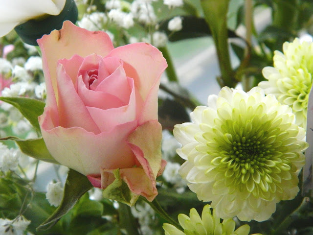 A photo showing a pink rose amongst a bouquet of flowers