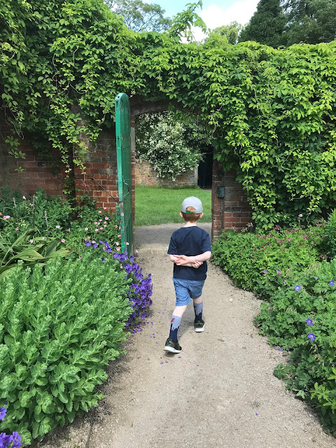 Little boy walking down a stony path, surrounded by flowers and heading towards an old fashioned gate