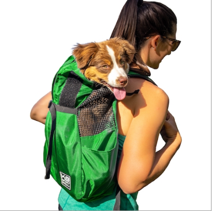 designer pet carriers