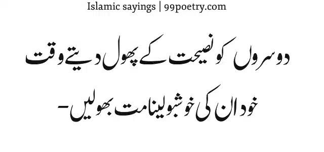 Dusron ko Nasihat Ke Phool dete Waqt-islamic sayings