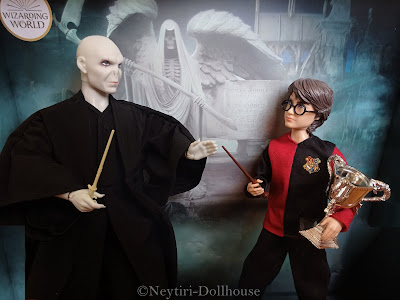 Harry Potter and Lord Voldemort doll