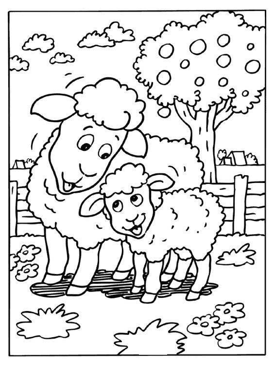 Hình tô màu hai mẹ con cừu