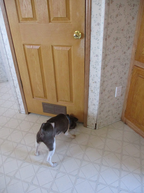 Gabe smells Blue on the other side of the door and wants to join him for breakfast.