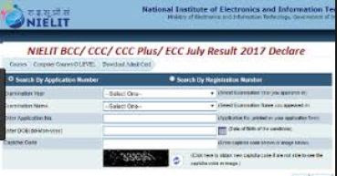 NIELIT Computer Course Result