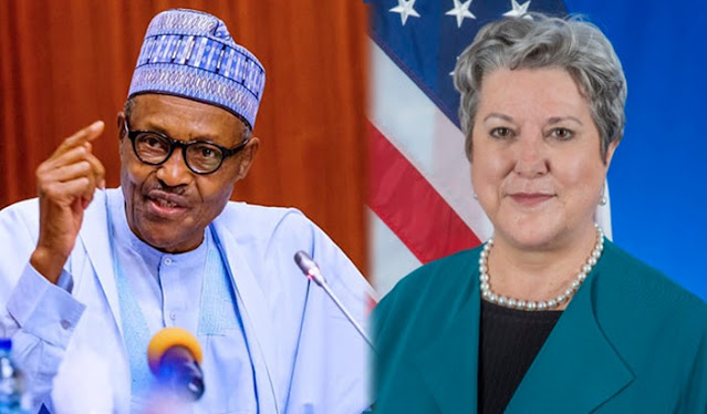 Important positions given to particular ethnic groups under Buhari: U.S.