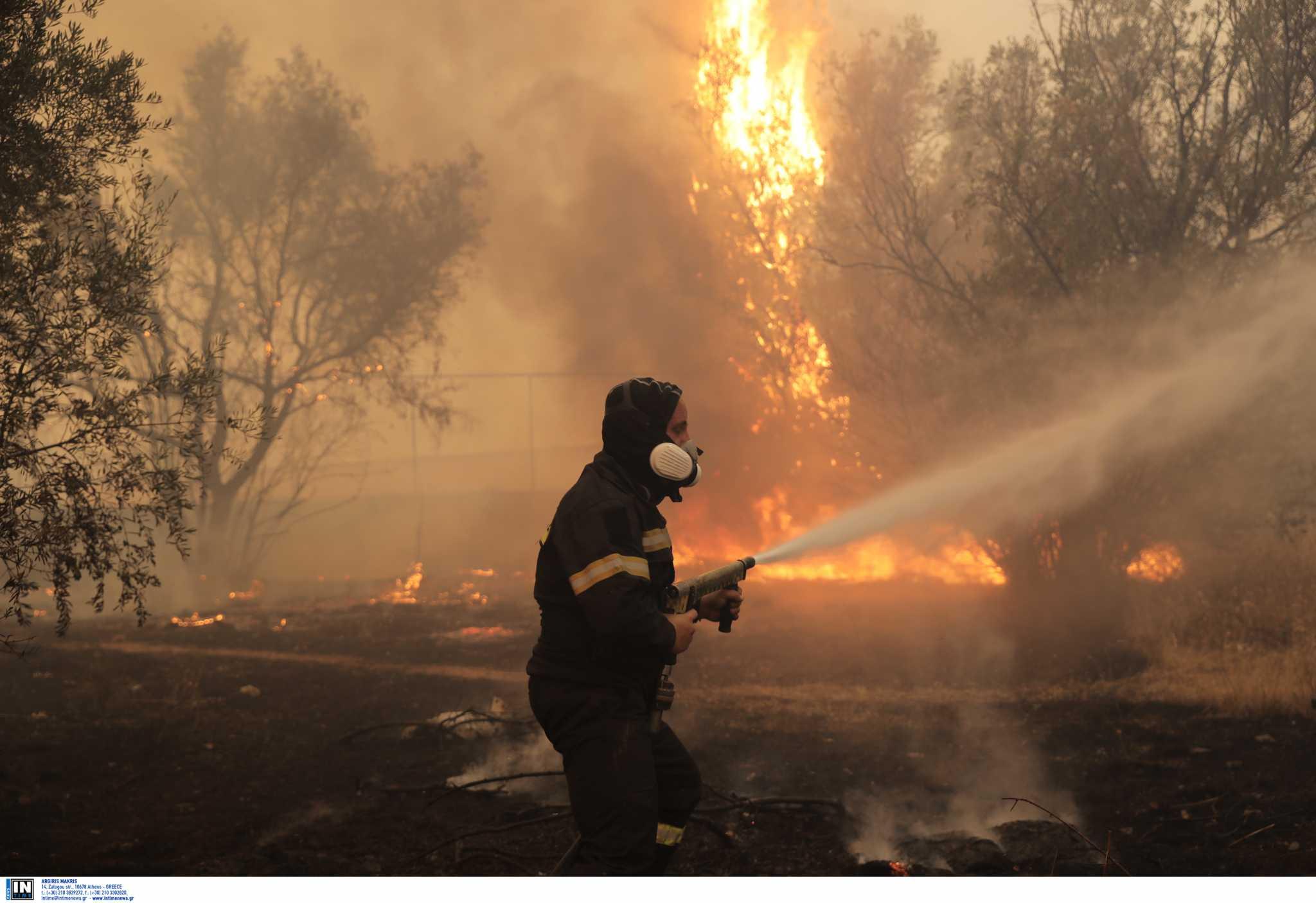 Υπόνοιες για οργανωμένο σχέδιο εμπρησμών πίσω από φωτιές
