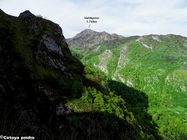 Una mirada al Pico Valdepino subiendo por Ozanía.