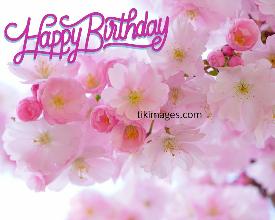 Happy Birthday Flowers Images Happy Birthday Roses Images Free